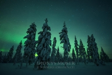 Finnland Wintertraum_13