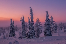 Finnland Wintertraum_1