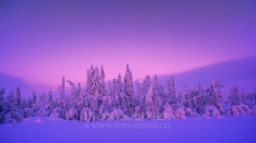 Finnland Wintertraum_4