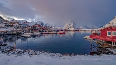 Lofoten - Harbour in Reine