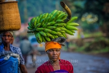 Back from the Market_3