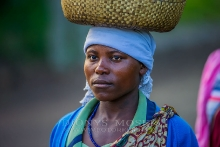 Back from the Market_4