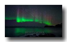 Polarlicht in Lofoten