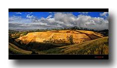 Kornfelder auf dem Weg ins Omo-Valley